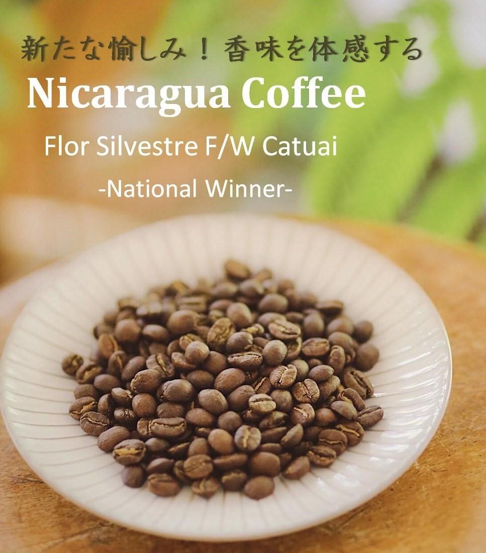 ニカラグア000.jpg