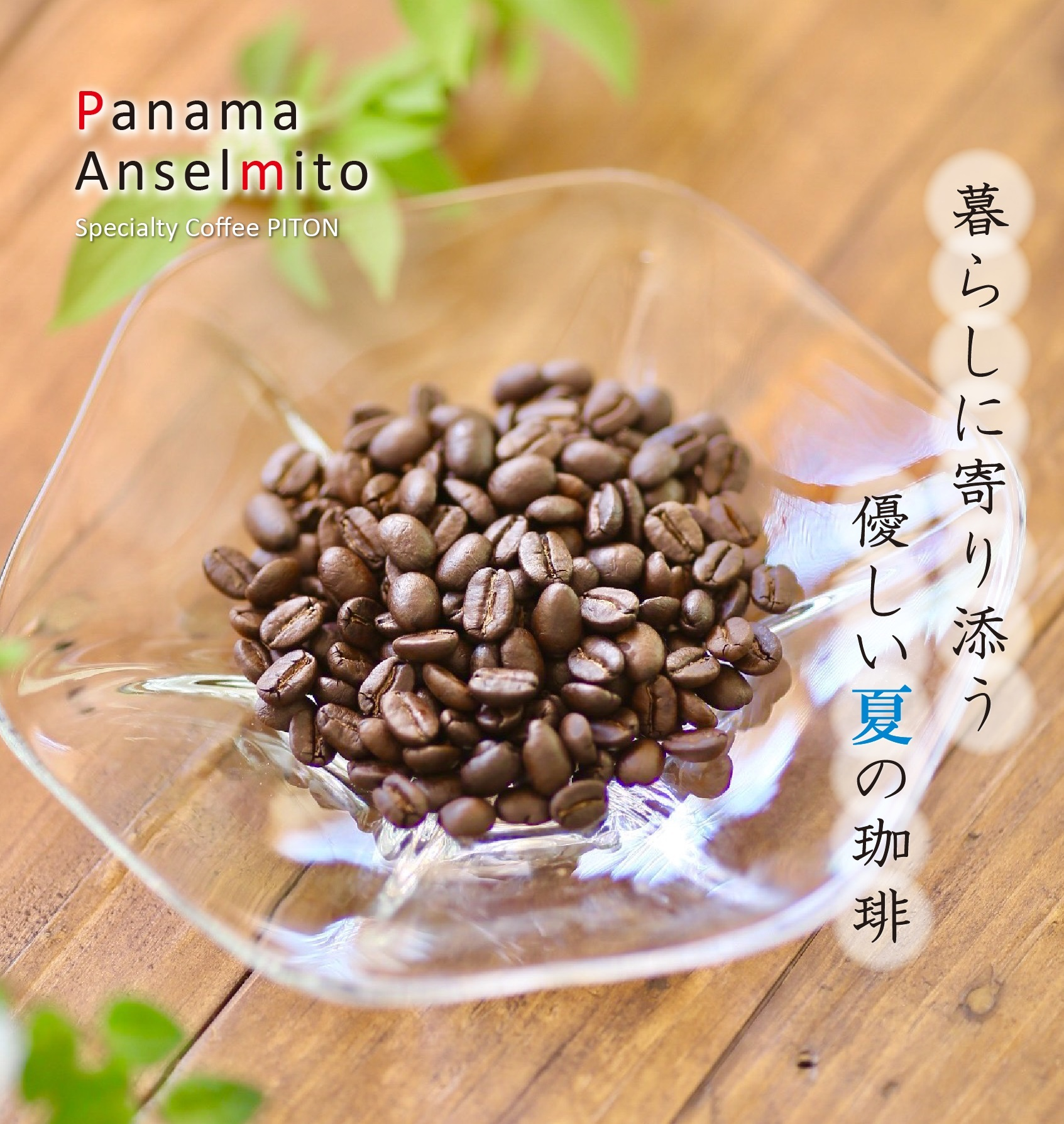 パナマ01.jpg